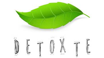 Din Detox Guide